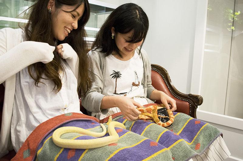 Image result for tokyo snake center